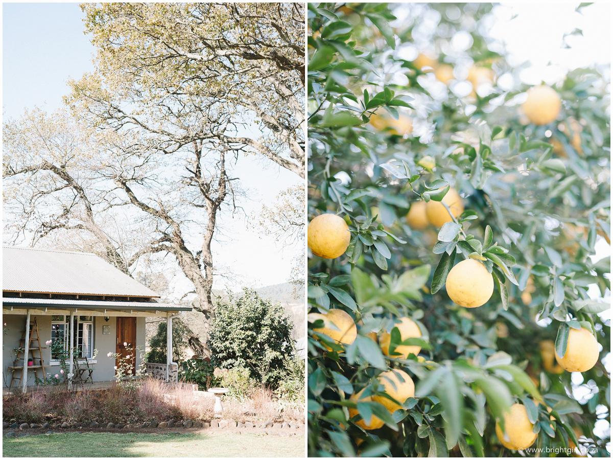 BrightGirl_Orchards_LanaGreg-8